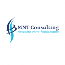 MNT CONSULTING