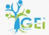 GROUPEMENT POUR L'EDUCATION & L'INVESTISSEMENT-GEI